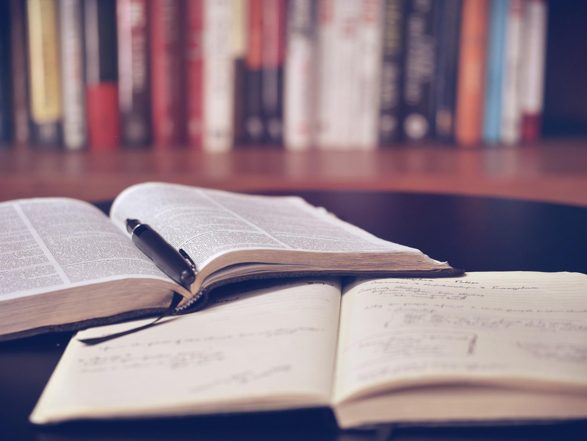 本をたくさん読めば武器になる(ビジネス・ノウハウ系がオススメ)
