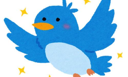 ツイッターで毎日できるだけ多くツイートをするだけでフォロワー20人、いいね!が増えた
