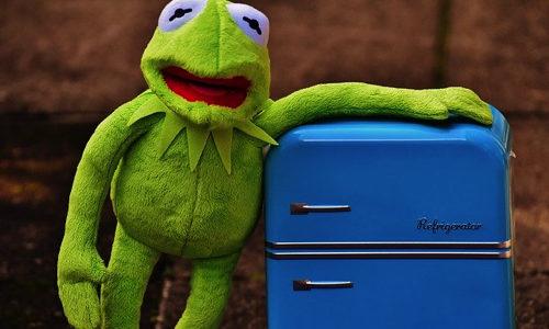 レッドブルの冷蔵庫は個人でレンタルできる? クーラーボックスの方がおすすめ?