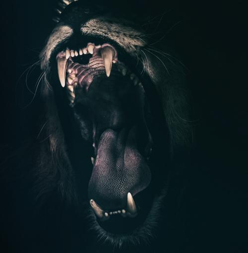 【ブロガーとかデスクワークする人は注意】 口を長時間閉じる事でおこる歯を噛み締めて苦しくなる