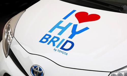 hybrid-428183_640.jpg