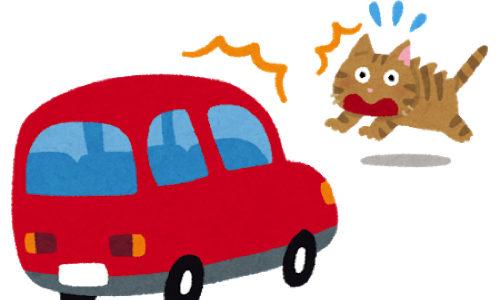ウーバーイーツ配達中に事故って配達が怖くなった話(被害者)と配達中の注意点